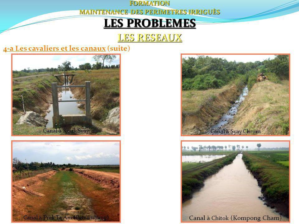 53FORMATION MAINTENANCE DES PERIMETRES IRRIGUÈS LES PROBLEMES LES RESEAUX 4-a Les cavaliers et les canaux (suite) Canal à Prek Ta Am (Battambang) Cana