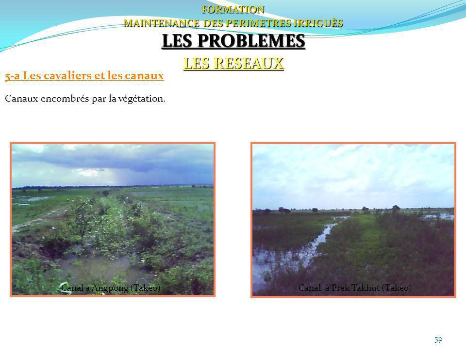 59 FORMATION MAINTENANCE DES PERIMETRES IRRIGUÈS LES PROBLEMES LES RESEAUX 5-a Les cavaliers et les canaux Canaux encombrés par la végétation. Canal à
