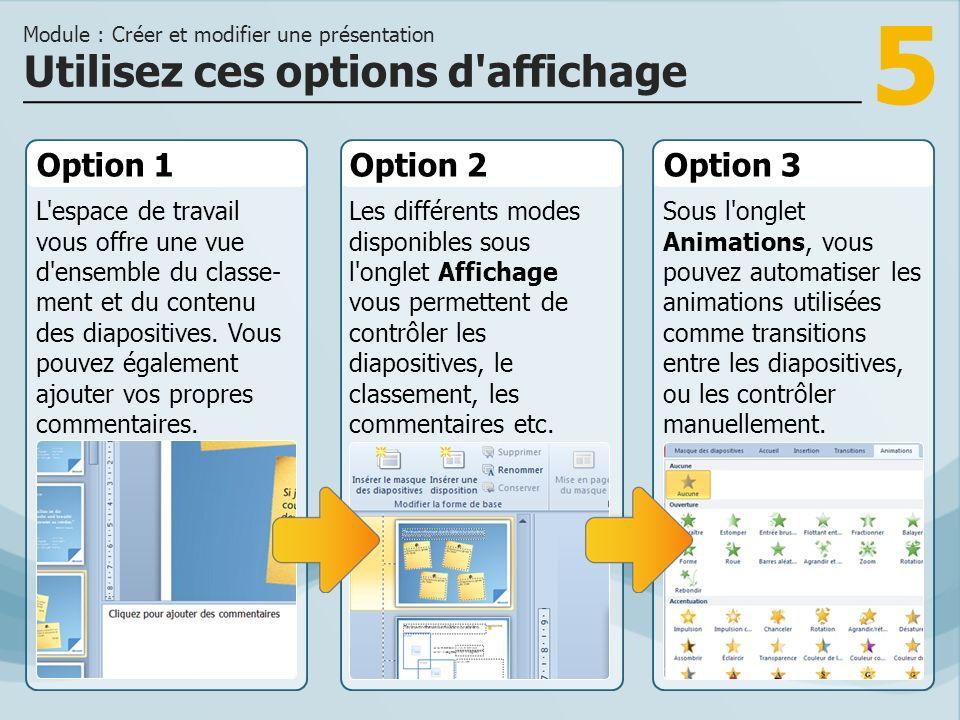 5 Option 1 L'espace de travail vous offre une vue d'ensemble du classe- ment et du contenu des diapositives. Vous pouvez également ajouter vos propres