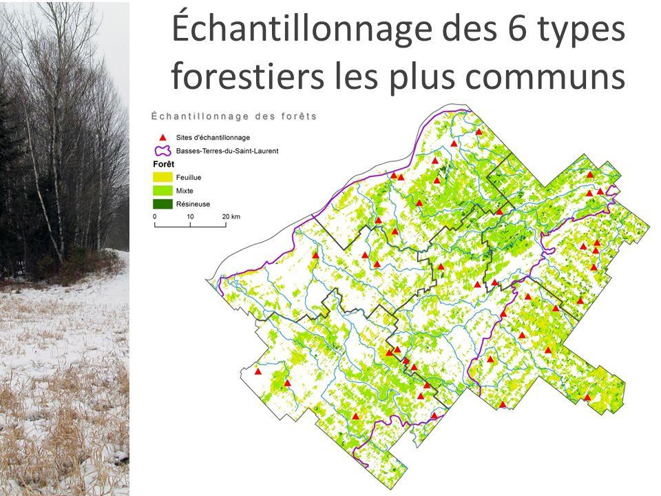 Échantillonnage des 6 types forestiers les plus communs