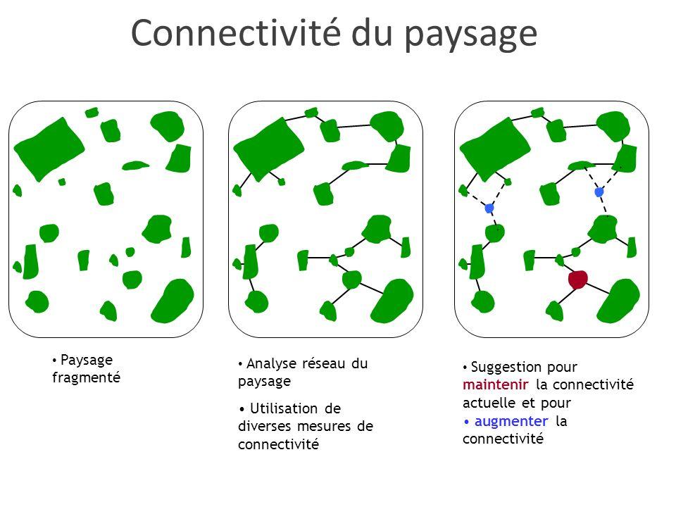 Paysage fragmenté Analyse réseau du paysage Utilisation de diverses mesures de connectivité Suggestion pour maintenir la connectivité actuelle et pour