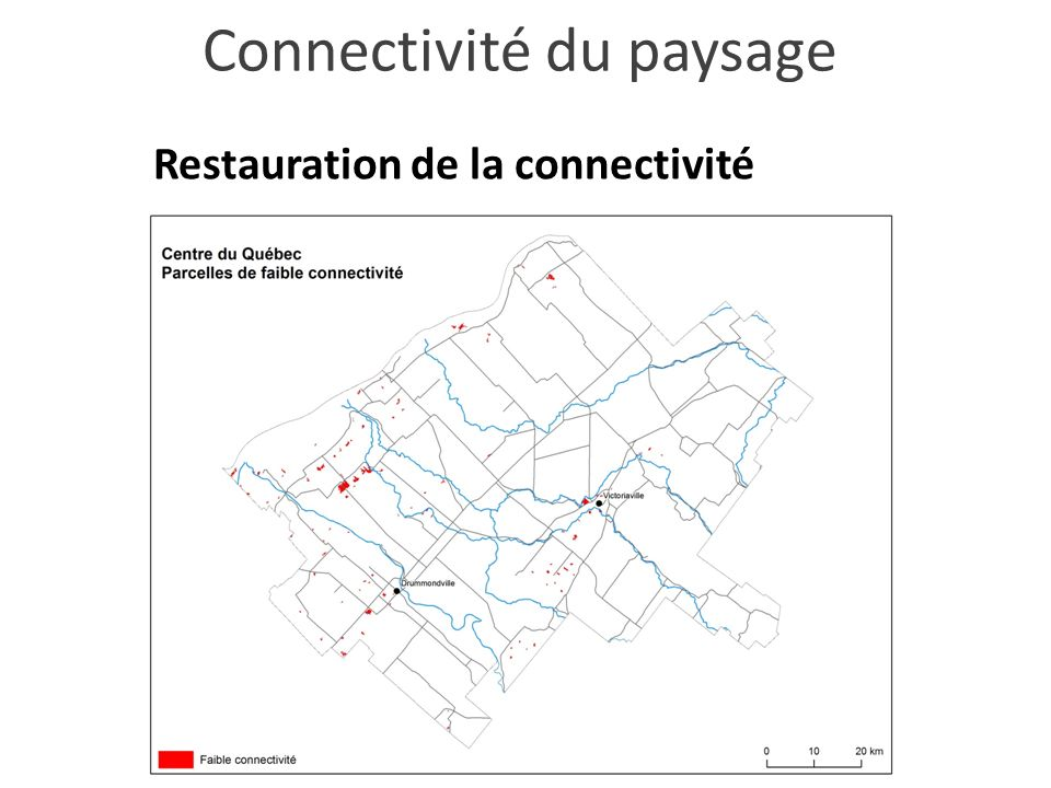 Restauration de la connectivité Connectivité du paysage