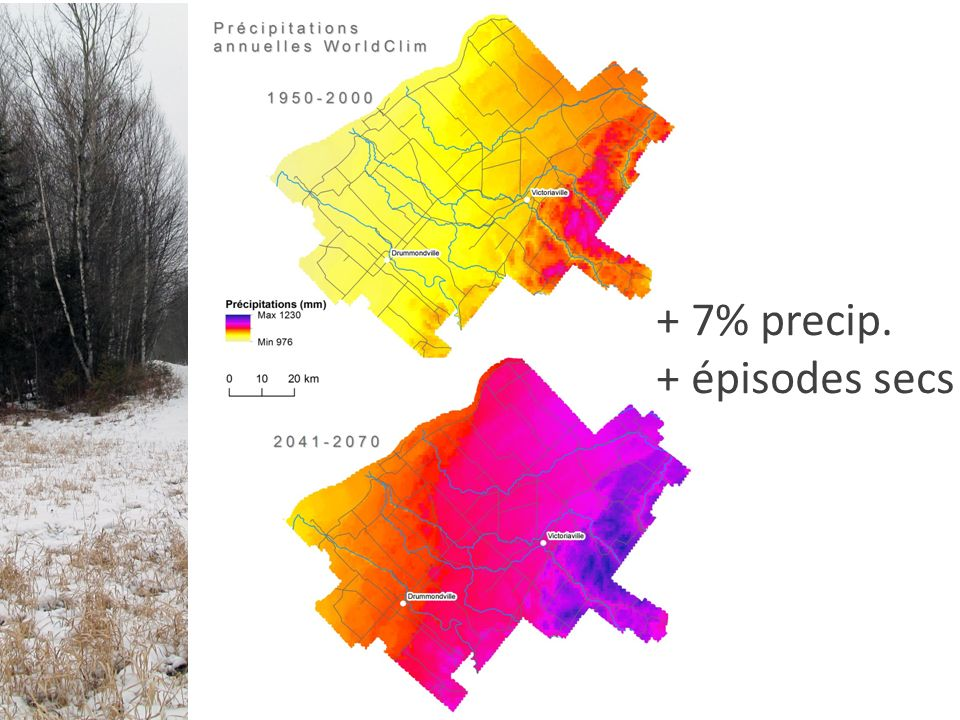 Nombre de parcelles = 21 Superficie total = A T Distribution de la taille des parcelles Connectivité du paysage