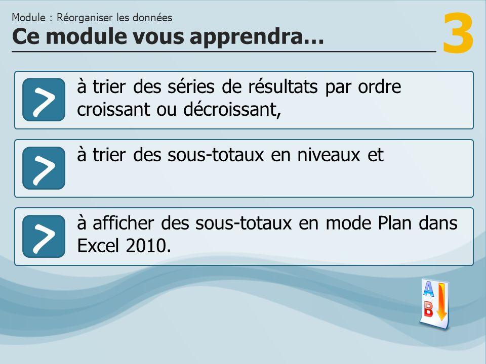 3 >> à trier des sous-totaux en niveaux et à afficher des sous-totaux en mode Plan dans Excel 2010.
