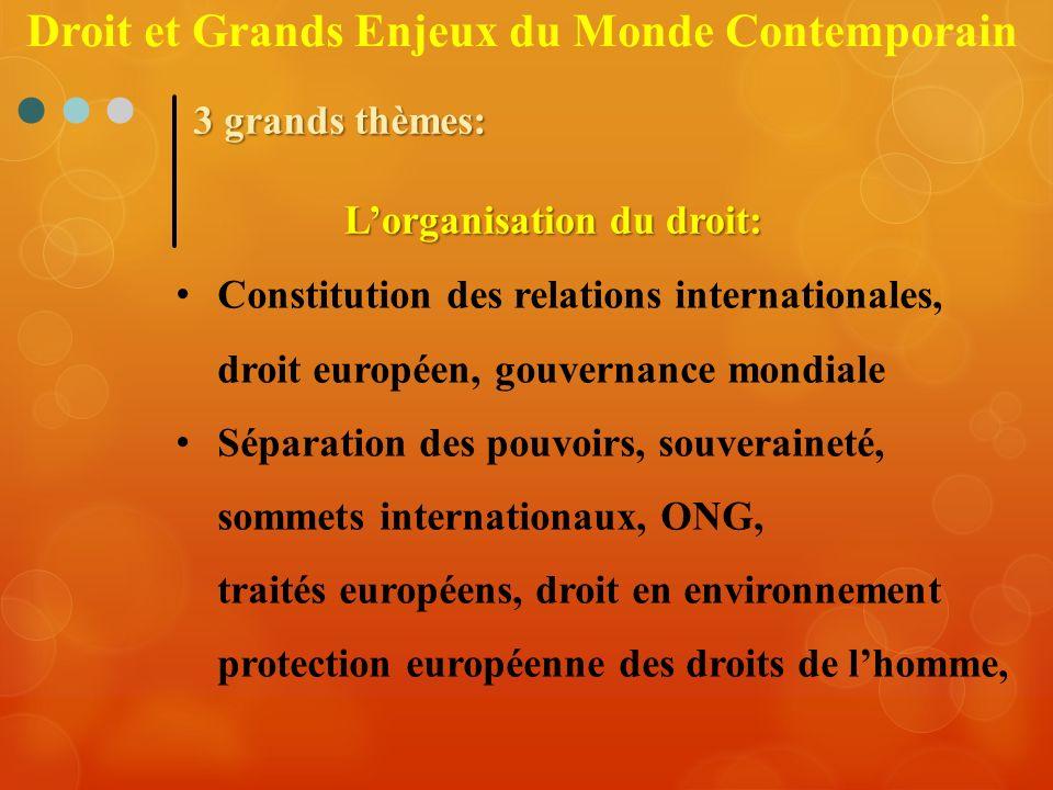 Constitution des relations internationales, droit européen, gouvernance mondiale Séparation des pouvoirs, souveraineté, sommets internationaux, ONG, t