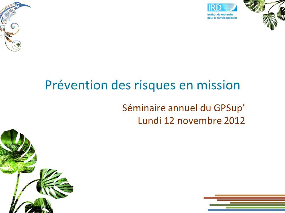 Prévention des risques en mission 32 Prévention des risques en mission - GPSup - 12 novembre 2012 Au regard des moyens de transport utilisés Utilisation des véhicules : Réglementer leur utilisation (qui.
