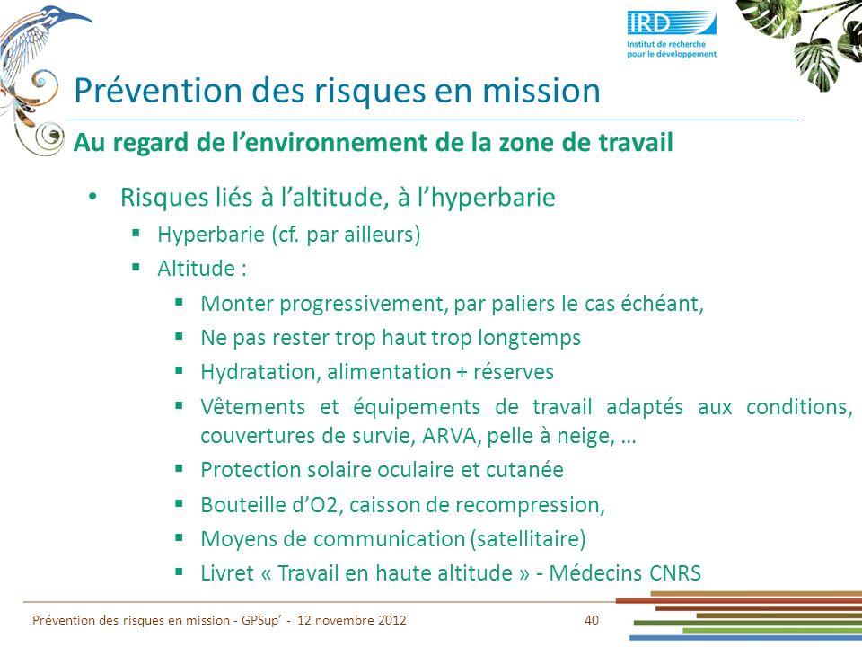 Prévention des risques en mission 40 Prévention des risques en mission - GPSup - 12 novembre 2012 Au regard de lenvironnement de la zone de travail Ri