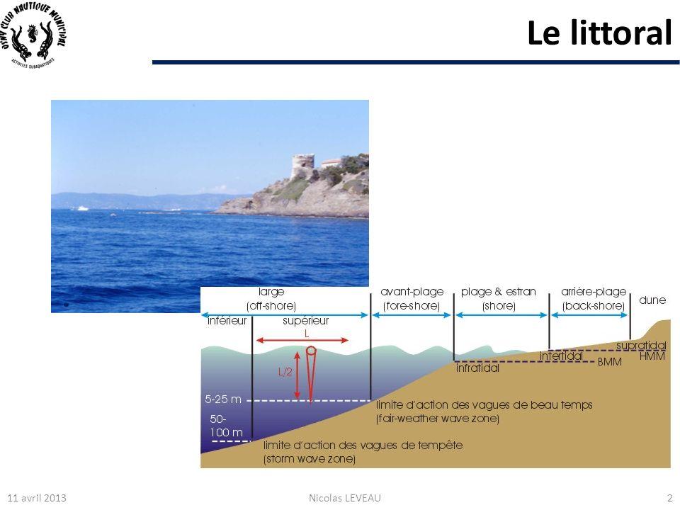 En pleine eau : le Plancton 11 avril 2013Nicolas LEVEAU43 Aurélie (Aurelia aurita) Pélagie (Pelagia noctiluca) Les méduses, salpes, bolinopsis … Salpe