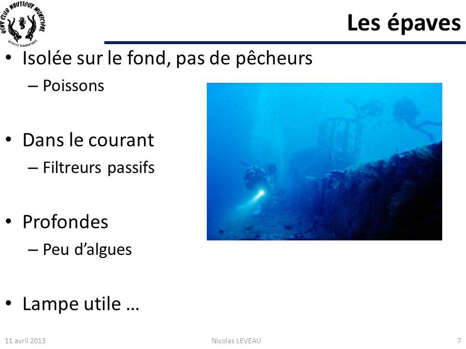 Formations et information Commission environnement et biologie subaquatique : – Nationale : http://biologie.ffessm.fr/http://biologie.ffessm.fr/ – Départementale : http://bio95.free.fr/http://bio95.free.fr/ Longitude 181 : http://www.longitude181.comhttp://www.longitude181.com Formations : – Plongeur bio niveaux 1 et 2 – Formateur biologie niveaux 1 à 3 11 avril 2013Nicolas LEVEAU48