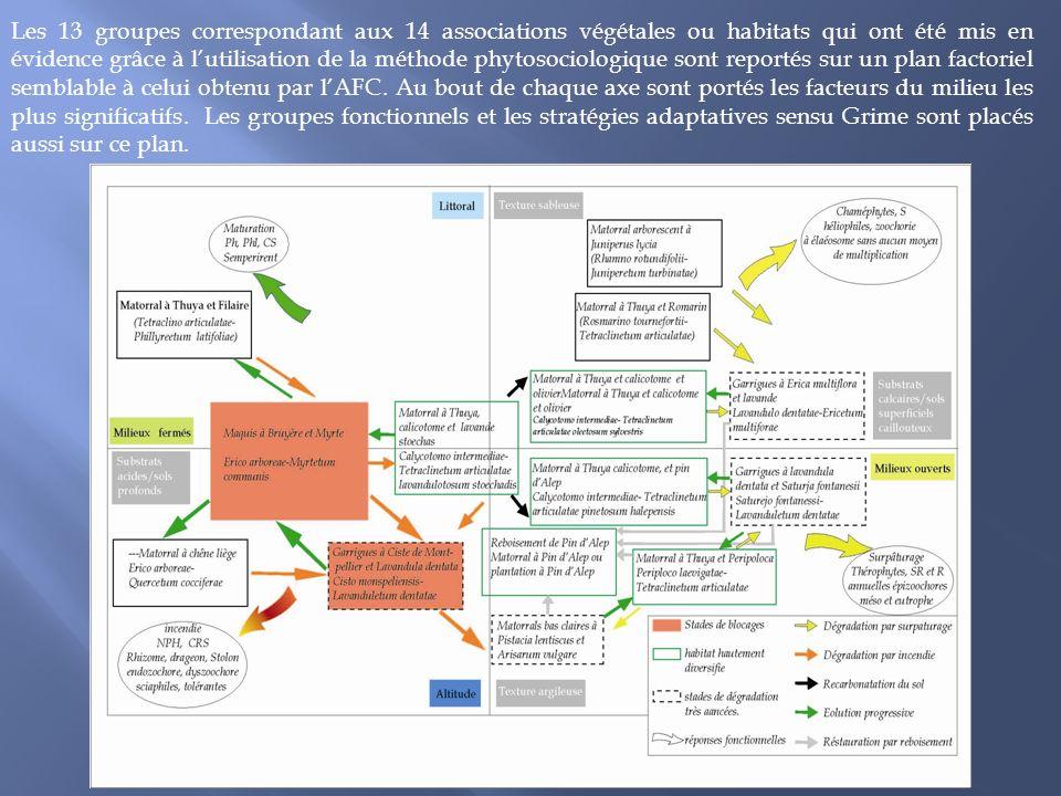 Les 13 groupes correspondant aux 14 associations végétales ou habitats qui ont été mis en évidence grâce à lutilisation de la méthode phytosociologiqu