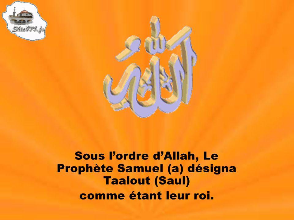 Sous lordre dAllah, Le Prophète Samuel (a) désigna Taalout (Saul) comme étant leur roi.