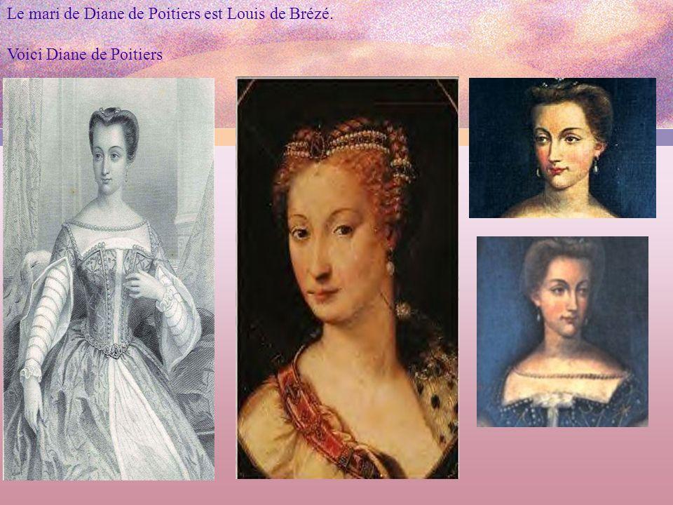 Le mari de Diane de Poitiers est Louis de Brézé. Voici Diane de Poitiers