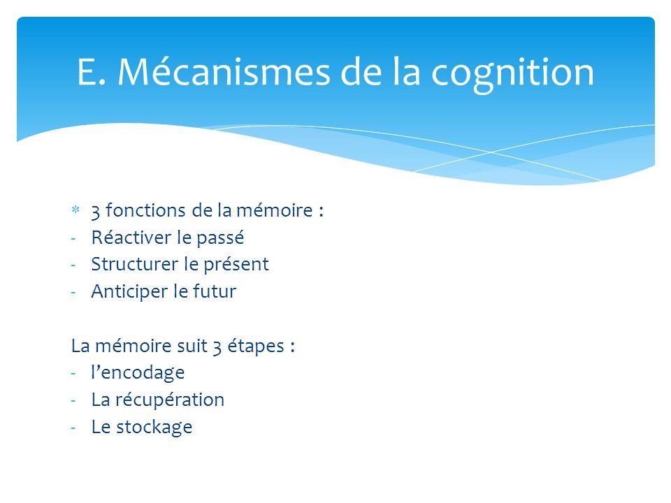3 fonctions de la mémoire : -Réactiver le passé -Structurer le présent -Anticiper le futur La mémoire suit 3 étapes : -lencodage -La récupération -Le