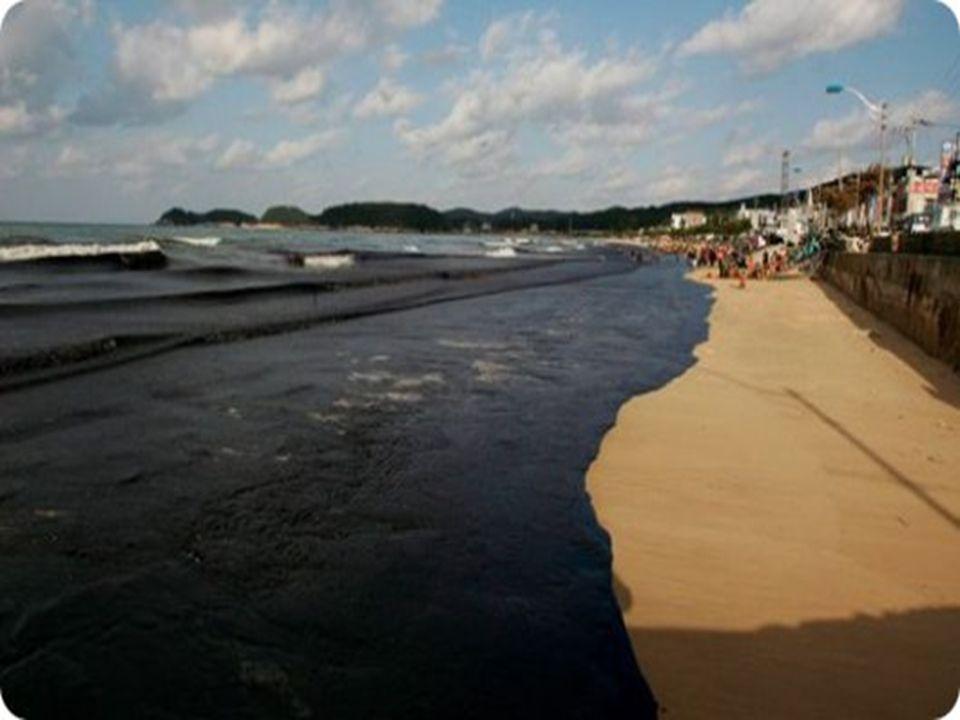 Ramassage grossier Retirer le maximum de polluant des côtes afin quil ne retourne pas contaminer dautres sites.
