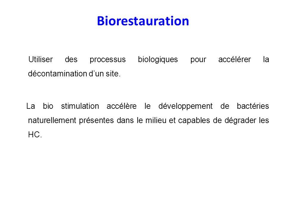 Biorestauration Utiliser des processus biologiques pour accélérer la décontamination dun site. La bio stimulation accélère le développement de bactéri