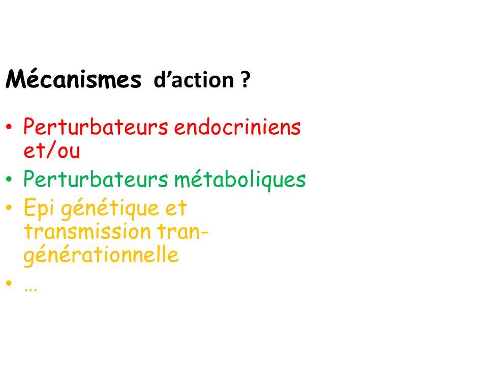 Mécanismes daction ? Perturbateurs endocriniens et/ou Perturbateurs métaboliques Epi génétique et transmission tran- générationnelle …