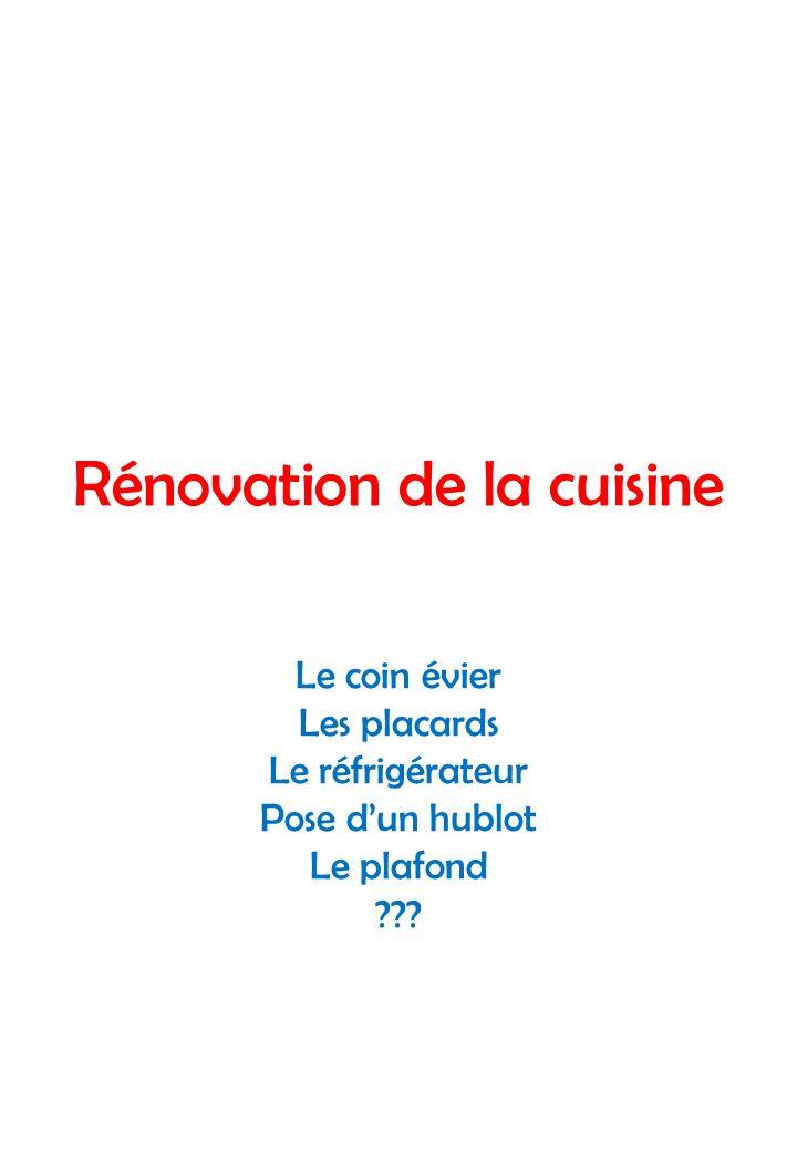 Rénovation de la cuisine Le coin évier Les placards Le réfrigérateur Pose dun hublot Le plafond ???