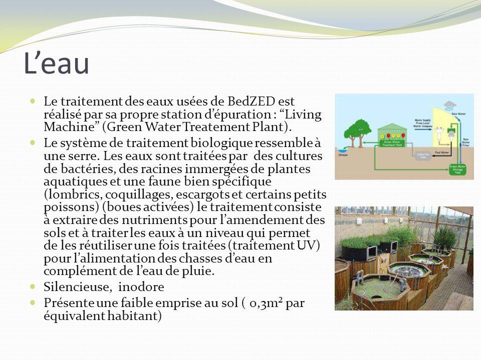 Leau Le traitement des eaux usées de BedZED est réalisé par sa propre station dépuration : Living Machine (Green Water Treatement Plant). Le système d