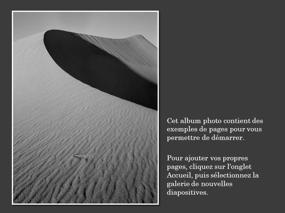 Cet album photo contient des exemples de pages pour vous permettre de démarrer. Pour ajouter vos propres pages, cliquez sur l'onglet Accueil, puis sél
