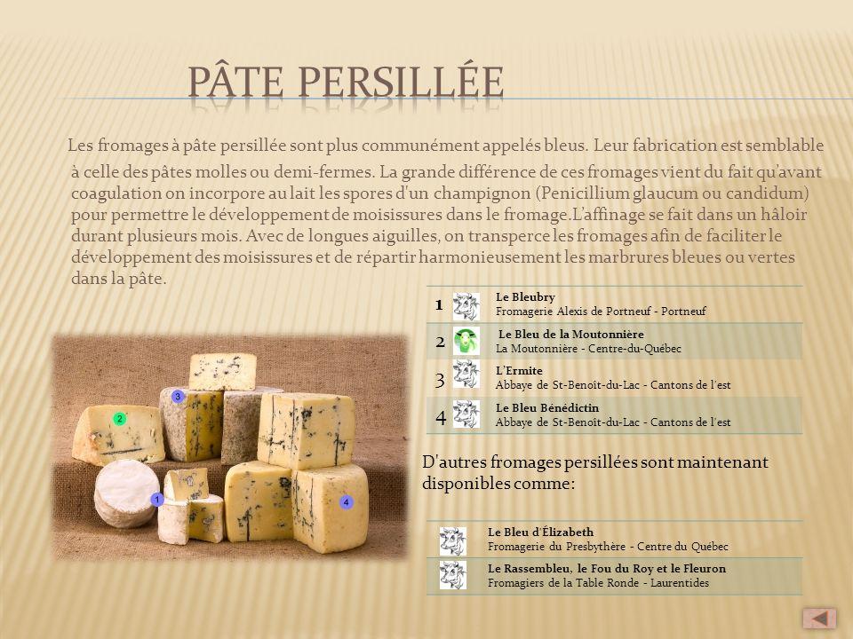 Les fromages à pâte persillée sont plus communément appelés bleus. Leur fabrication est semblable à celle des pâtes molles ou demi-fermes. La grande d