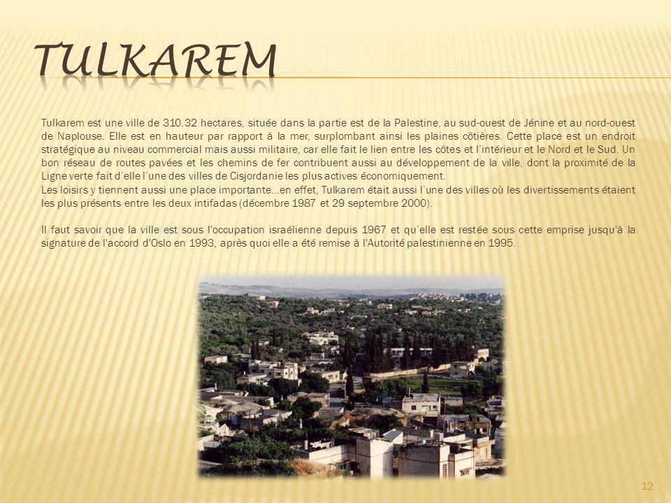 12 Tulkarem est une ville de 310.32 hectares, située dans la partie est de la Palestine, au sud-ouest de Jénine et au nord-ouest de Naplouse.