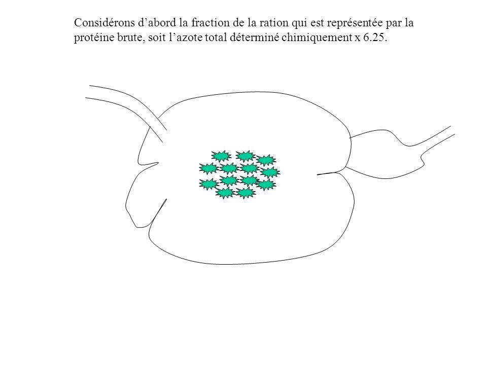 Considérons dabord la fraction de la ration qui est représentée par la protéine brute, soit lazote total déterminé chimiquement x 6.25.
