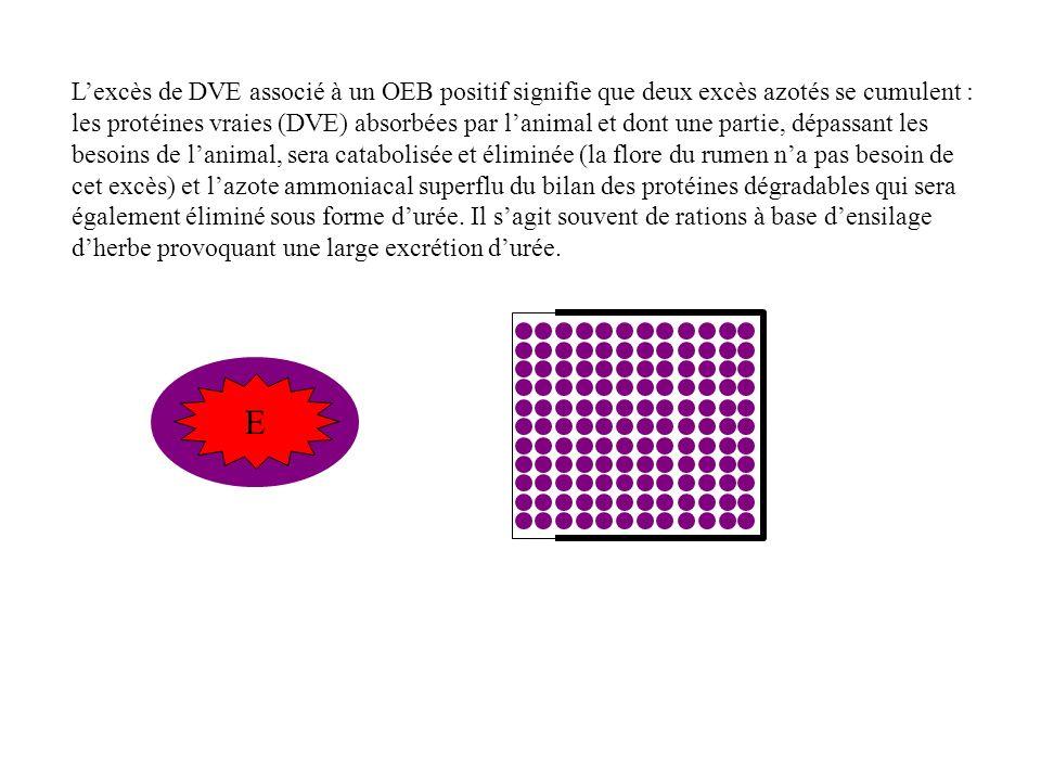 Lexcès de DVE associé à un OEB positif signifie que deux excès azotés se cumulent : les protéines vraies (DVE) absorbées par lanimal et dont une partie, dépassant les besoins de lanimal, sera catabolisée et éliminée (la flore du rumen na pas besoin de cet excès) et lazote ammoniacal superflu du bilan des protéines dégradables qui sera également éliminé sous forme durée.