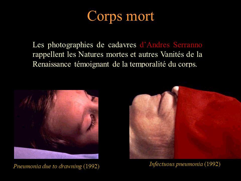 Corps écorché Les œuvres de Kiki Smith rappellent les écorchés des anatomistes.