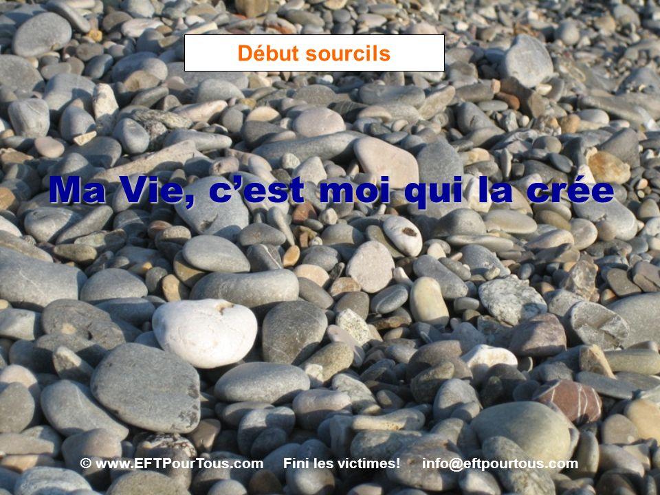 © www.EFTPourTous.com Fini les victimes! info@eftpourtous.com Début sourcils Ma Vie, cest moi qui la crée