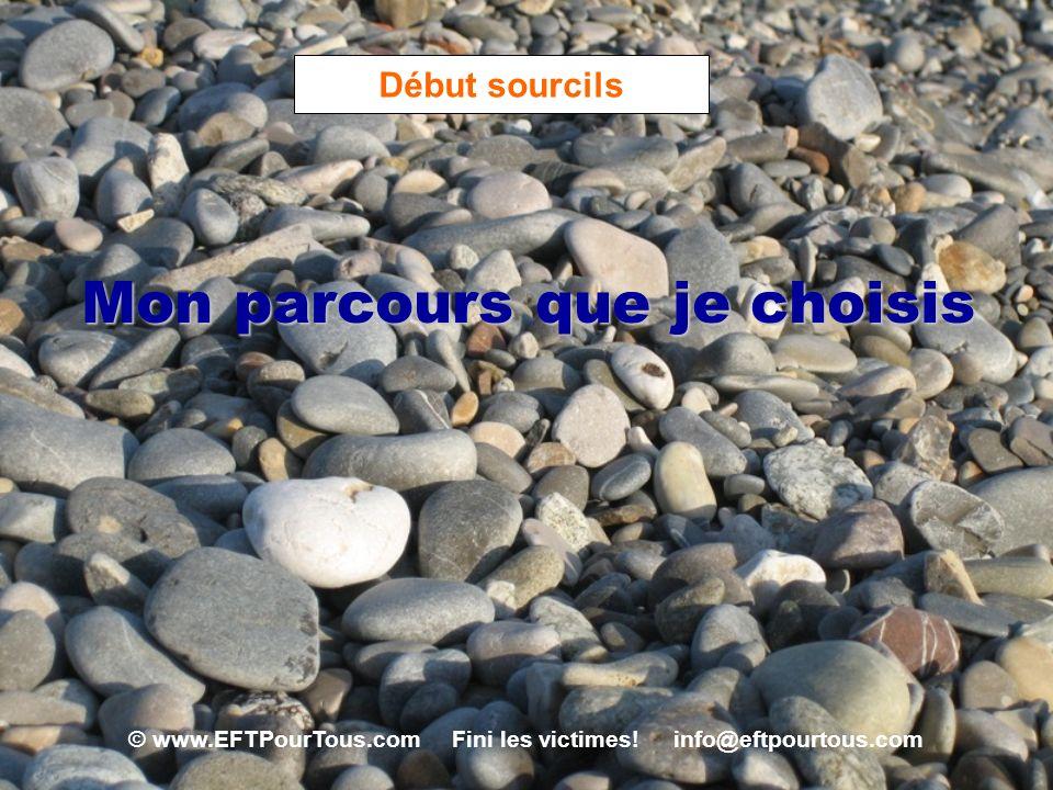 © www.EFTPourTous.com Fini les victimes! info@eftpourtous.com Début sourcils Mon parcours que je choisis