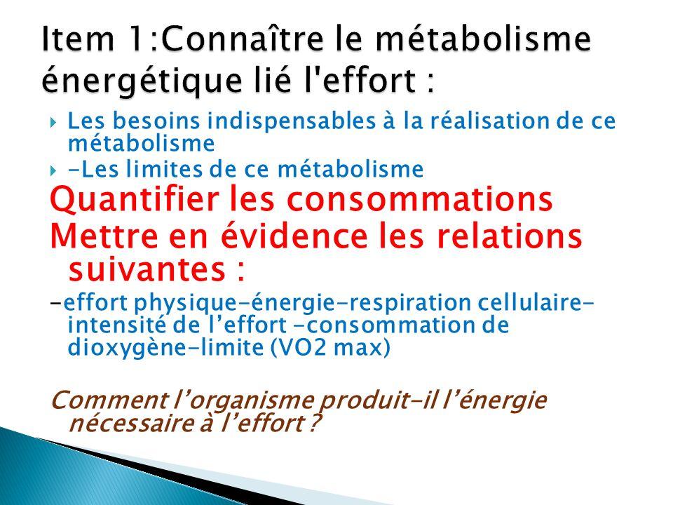 Les besoins indispensables à la réalisation de ce métabolisme -Les limites de ce métabolisme Quantifier les consommations Mettre en évidence les relat