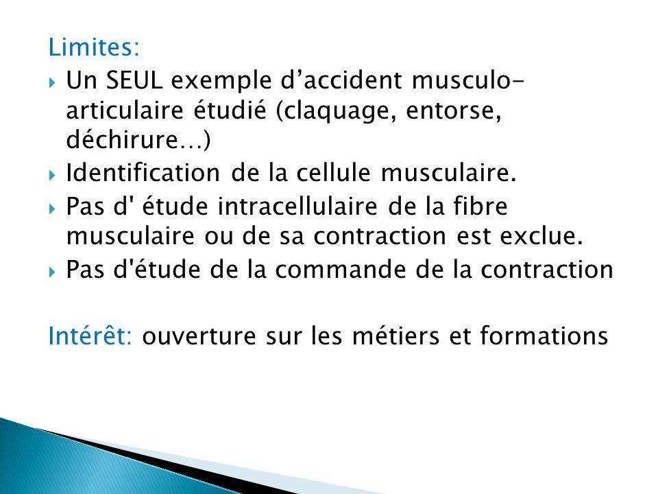 Limites: Un SEUL exemple daccident musculo- articulaire étudié (claquage, entorse, déchirure…) Identification de la cellule musculaire. Pas d' étude i