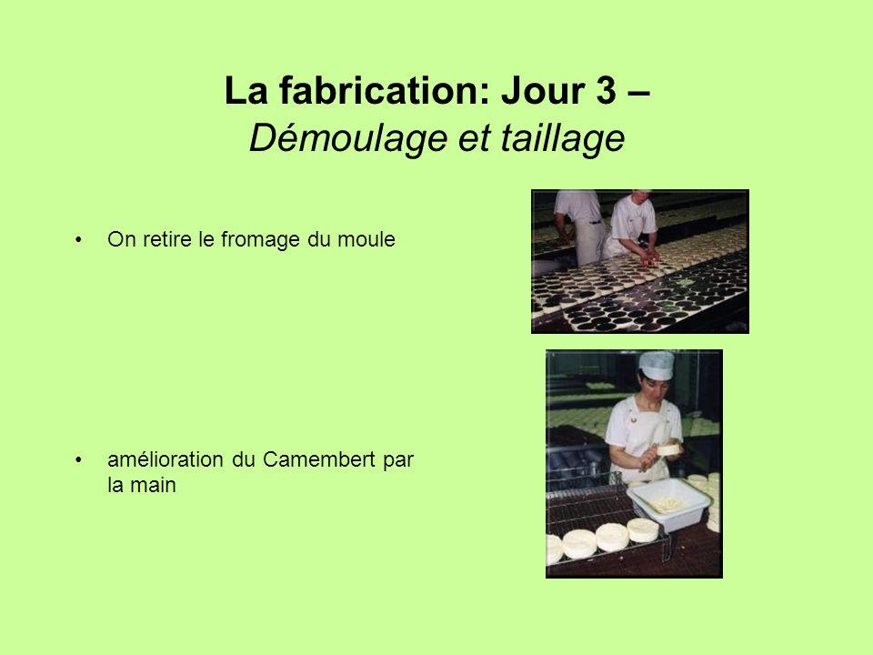 La fabrication: Jour 3 – Démoulage et taillage On retire le fromage du moule amélioration du Camembert par la main
