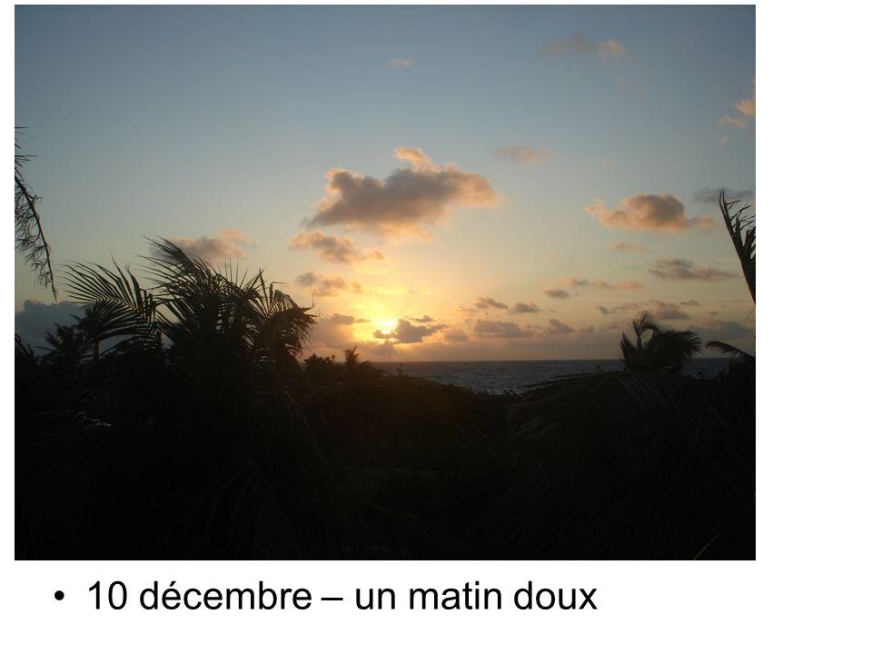 10 décembre – un matin doux