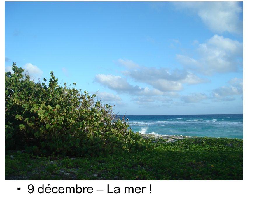29 novembre – Un clin doeil …