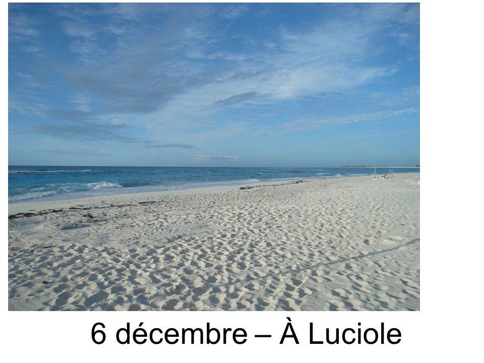 6 décembre – À Luciole