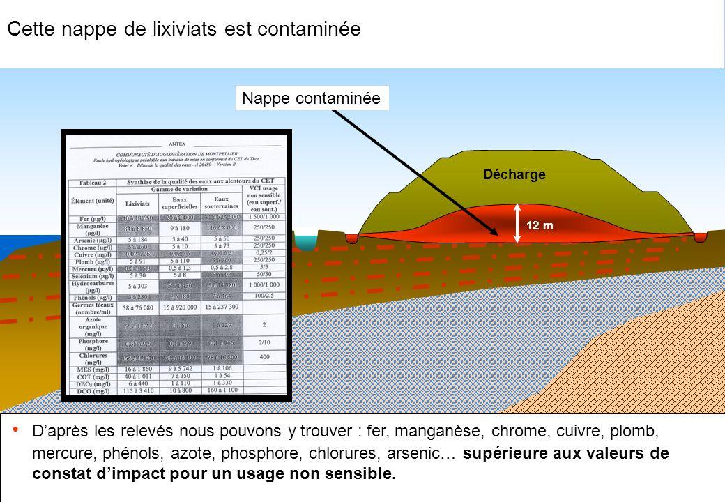 Cette nappe de lixiviats est contaminée Daprès les relevés nous pouvons y trouver : fer, manganèse, chrome, cuivre, plomb, mercure, phénols, azote, ph