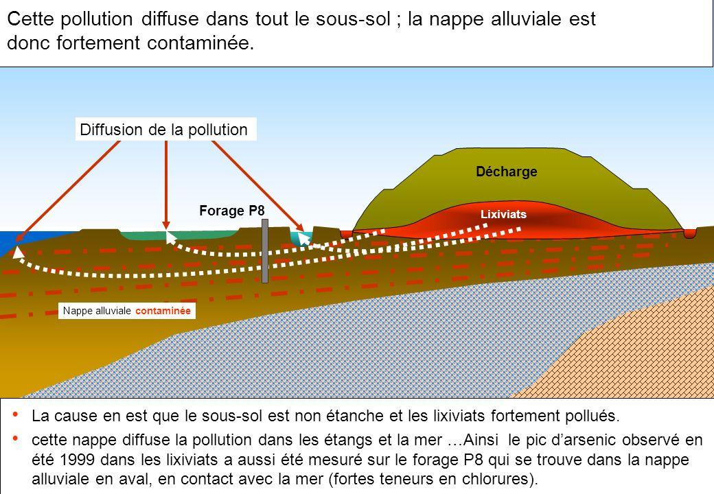 Cette pollution diffuse dans tout le sous-sol ; la nappe alluviale est donc fortement contaminée. La cause en est que le sous-sol est non étanche et l