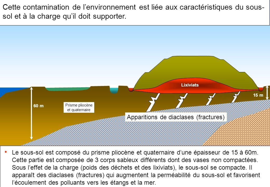 Cette contamination de lenvironnement est liée aux caractéristiques du sous- sol et à la charge quil doit supporter. Le sous-sol est composé du prisme