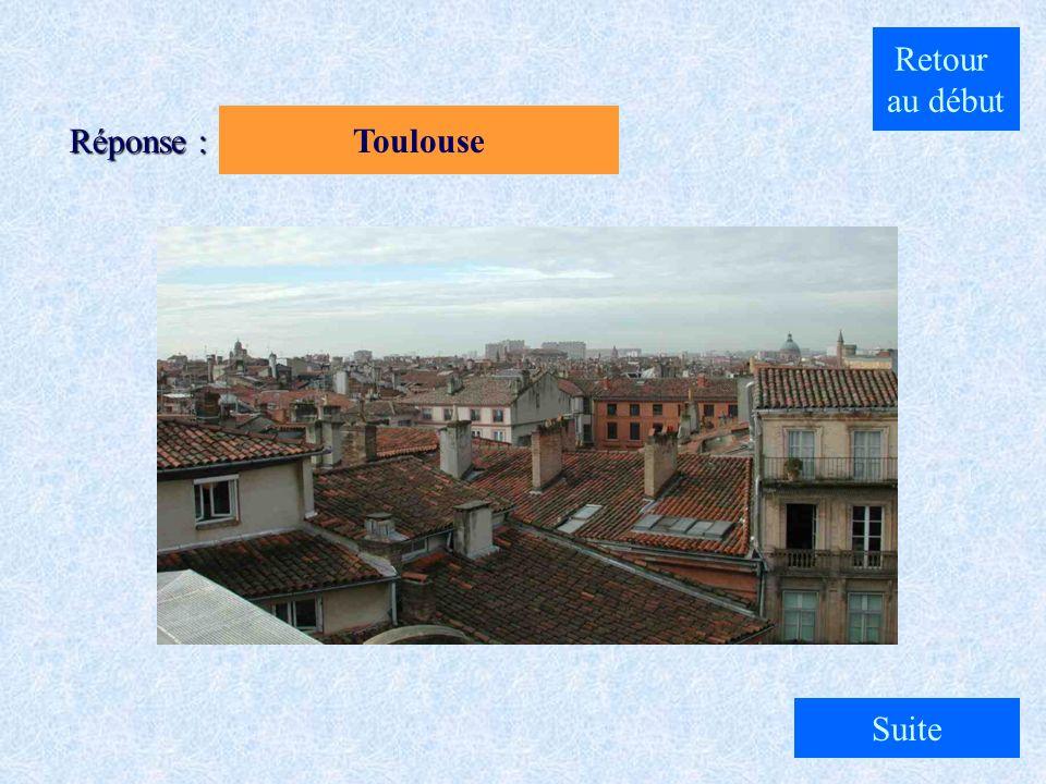 A. Paris B. Toulouse C. Lyon Quelle est la ville pilote de la météorologie urbaine ? Question 1 : Cliquez sur la réponse qui vous semble exacte... Ret