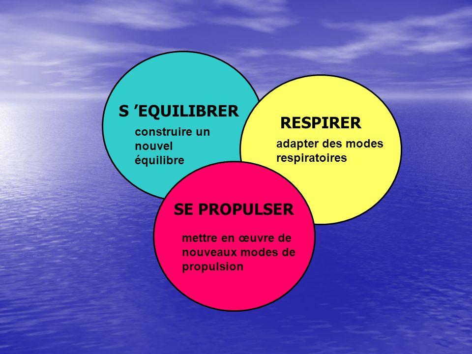 S EQUILIBRER RESPIRER SE PROPULSER construire un nouvel équilibre adapter des modes respiratoires mettre en œuvre de nouveaux modes de propulsion