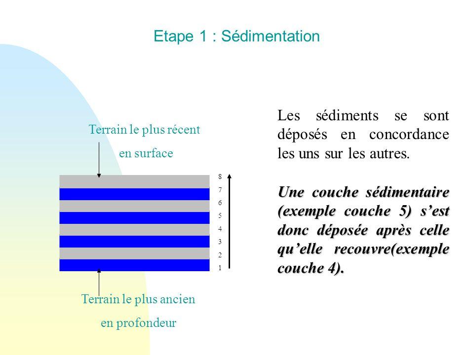 Terrain le plus ancien en profondeur Terrain le plus récent en surface 8765432187654321 Etape 1 : Sédimentation Les sédiments se sont déposés en conco