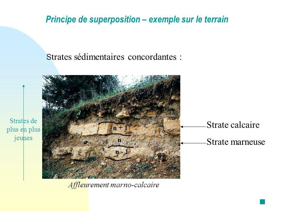 S trates sédimentaires concordantes : Principe de superposition – exemple sur le terrain Affleurement marno-calcaire Strate calcaire Strate marneuse n