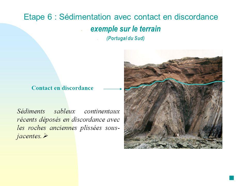 Sédiments sableux continentaux récents déposés en discordance avec les roches anciennes plissées sous- jacentes. Etape 6 : Sédimentation avec contact