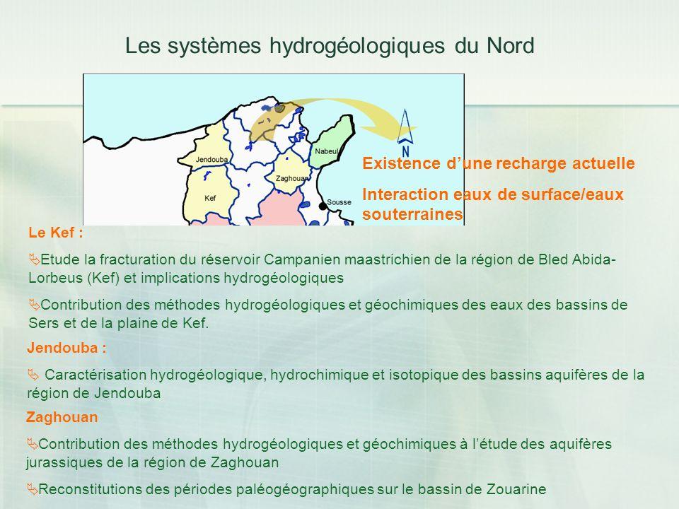 Les systèmes hydrogéologiques du Nord Le Kef : Etude la fracturation du réservoir Campanien maastrichien de la région de Bled Abida- Lorbeus (Kef) et
