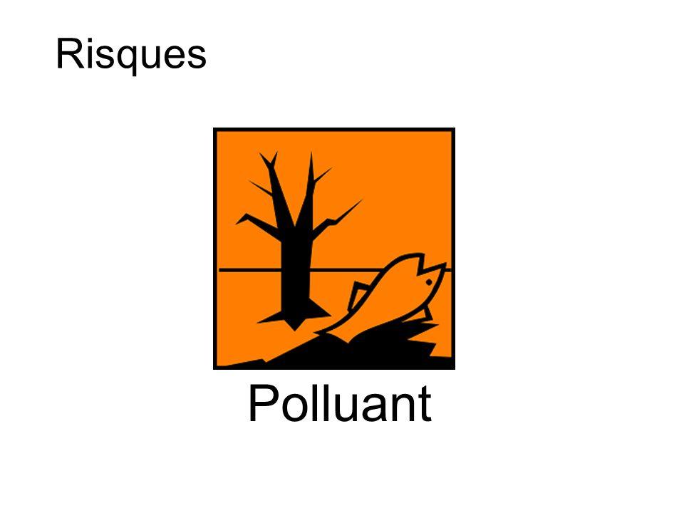 Polluant Risques