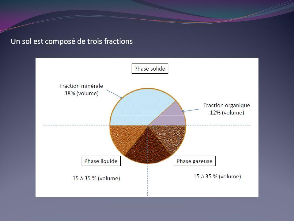 Un sol est composé de trois fractions Solide (éléments minéraux et matières organiques) Liquide (solution du sol) Gazeuse (atmosphère du sol)