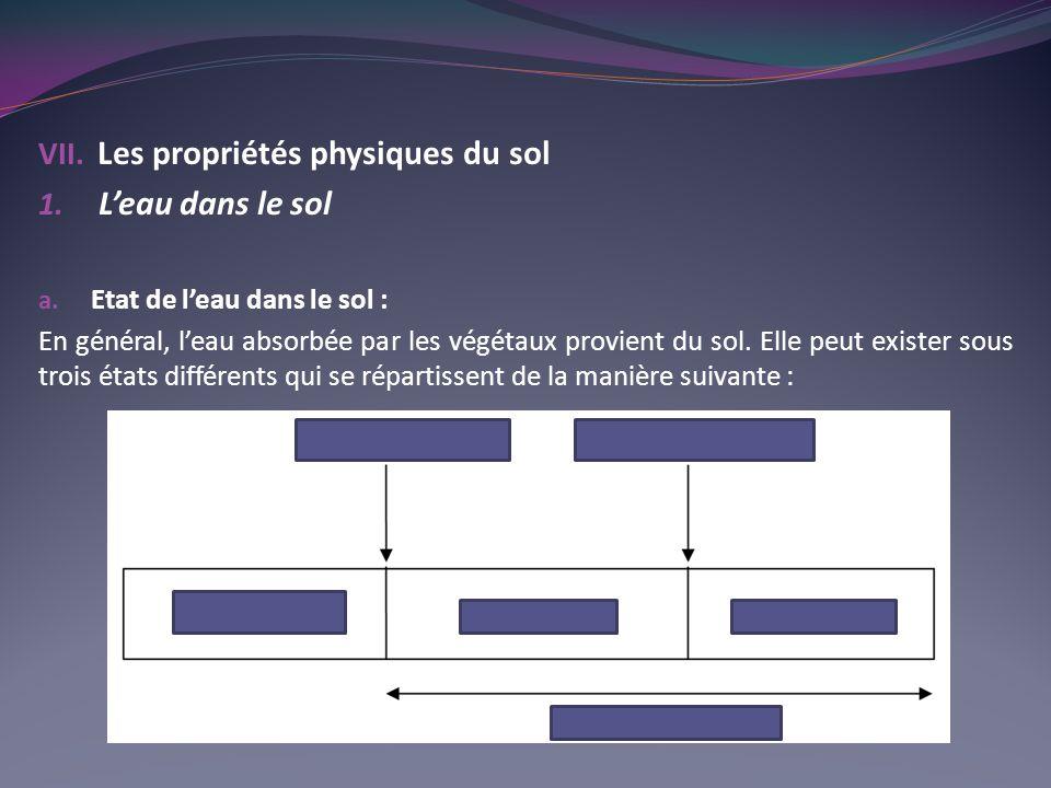 VII.Les propriétés physiques du sol 1. Leau dans le sol a.
