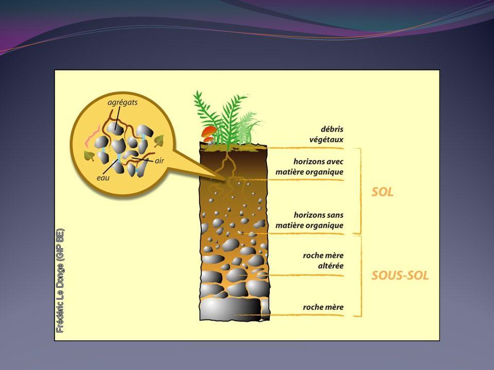 Le phosphore Les formes dans le sol sont : le phosphore de la solution du sol ; le phosphore fixé sur le complexe grâce au pont calcique ; le phosphore insoluble de la roche ; Ie phosphore organique.