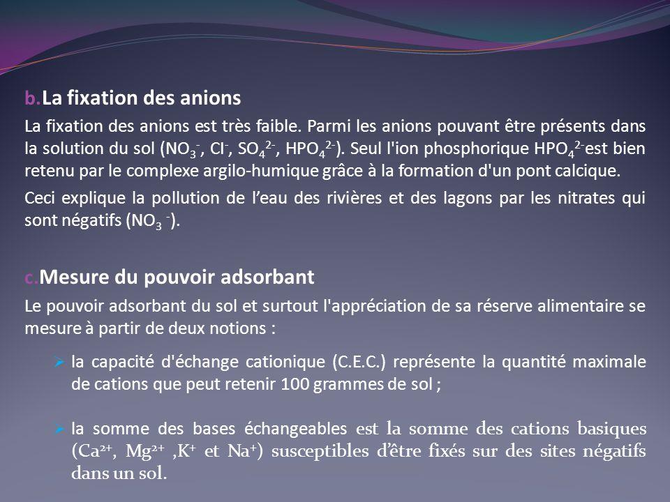 b.La fixation des anions La fixation des anions est très faible.